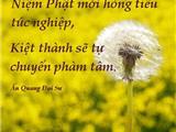 Tín – Nguyện – Hạnh Và Cách Thức Niệm Phật