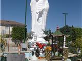 Một Trăm Ngày Niệm Phật & Một Trăm Bài Pháp
