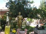 Ngày 73 – Người Việt Nam Và Ðạo Lý Nhà Phật