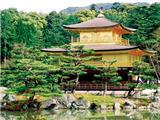 Tại Sao Các Nhà Sư Nhật Bản Xuất Gia Nhưng Lại Lập Gia Đình?