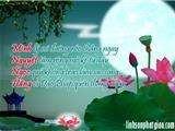 Hoa Trời Đơm Nhụy Ngày Sinh