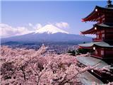 Mùa Thu Đi Chùa Ở Nhật