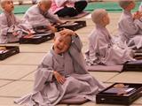 Hàn Quốc: Đón Mừng Phật Đản, Các Chú Bé Xuất Gia Gieo Duyên