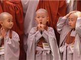 Giới Thiệu Kinh Phật Thuyết Như Vậy