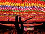 Hàn Quốc: Thắp Sáng 9,000 Đèn Lồng Đón Mừng Phật Đản