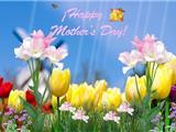 Lịch Sử Ngày Lễ Hiền Mẫu Mother's Day