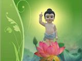 Bước Sen Thứ Bảy: Quả Vị Phật