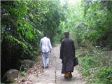Công Tác Trồng Rừng Ở Tổ Đình Linh Sơn Núi Dinh