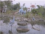 Hồng Hạc Múa Ở Chùa Việt Nam Phật Quốc Tự Nơi Đức Phật Đản Sinh