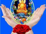Tình Thương Của Các Vị Bồ Tát Và Chư Phật