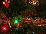 Hoa Kỳ: Giáng Sinh Đậm Chất Phật Giáo