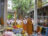 Đạo Phật Non Bồng