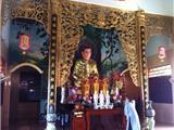 Kỳ Lạ Đàn Rắn Nghe Kinh Rơi Lộp Bộp Ở Chùa Long Thiền, Bình Thuận