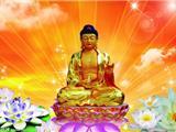 Phật Giáo, Y Học và Sức Khỏe - Đại Sư Tinh Vân