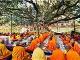 Hàng Ngàn Nhà Sư Diễu Hành Mừng Ngày Đức Phật Thành Đạo Ở Bồ Đề Đạo Tràng