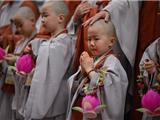 Chùm Ảnh: Thương Thương Các Chú Bé Xuất Gia Gieo Duyên Nhân Lễ Phật Đản Ở Hàn Quốc