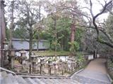 Nét Đẹp Quyến Rũ Của Vườn Thiền Nhật Bản