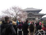 Tin Hay Không – Tín Đồ Theo Tôn Giáo Đông Hơn Dân Số Nhật Bản