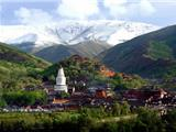 Hiệp Hội Phật Giáo Trung Hoa Khởi Kiện Truyền Thông Vì Xuyên Tạc Tôn  Giáo