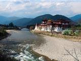 Vì Sao Bhutan Muốn Mọi Người Ngừng Ăn Thịt?