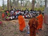 Các Nhà Sư Campuchia Chiến Đấu Với Nạn Phá Rừng Như Thế Nào?