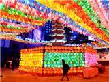 Chùm Ảnh: Hàn Quốc Thắp Sáng Phật Đản Giữa Mùa Dịch Coronavirus