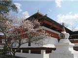 Ngôi Chùa Độc Đáo Trên Vương Quốc Phật Giáo Bhutan