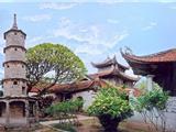 Vì Sao Vua Lý Nam Đế Xây Dựng Nhiều Chùa Trên Đất Việt?