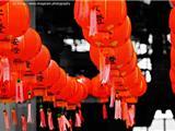 Úc Châu: Tỏa Sáng Đèn Lồng Lớn Nhất Thế Giới Đón Mừng Đại Lễ Phật Đản