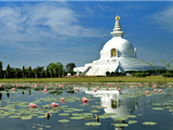 Đạo Phật Và Chính Trị