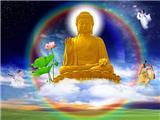 Những Đặc Điểm Của Đức Phật