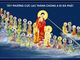 Có Phải Pháp Môn Niệm Phật, Nguyện Vãng Sanh Là Đi Ngược Với Giáo Lý Nhà Phật?