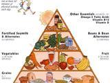 Tầm Quan Trọng Của Vitamin B12 Với Người Ăn Chay