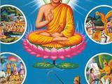 Thâm Ý Qua Hình Tượng Phật Và Bồ Tát - Tượng Phật Thích Ca Mâu Ni