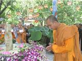 Chắp Tay Cầu Nguyện Đức Phật Đản Sanh