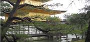 Phật Đường Vàng - Ngôi Làng Thần Tiên Của Nhật Bản