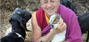 Một Ngày Bình Thường Của Nhà Sư Hạnh Phúc Nhất Thế Giới Ở Nepal